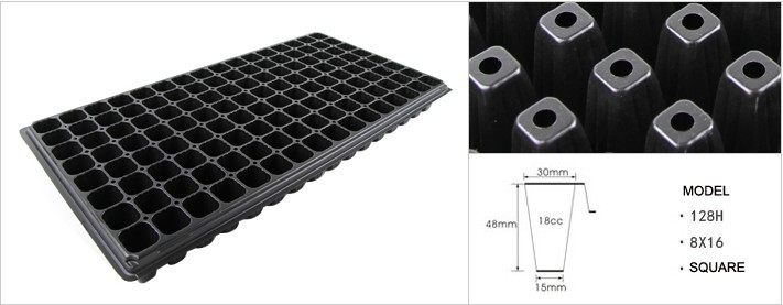 128 cells seedling tray