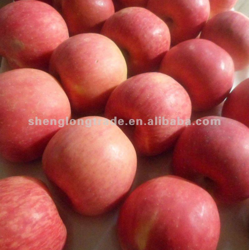 HOT SALES 2011 Red Apple (FRESH)