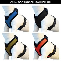 Air Mesh Dog Harness and Dog collar and leash