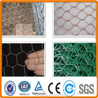 Hottest SaleGalvanized Chicken Wire Mesh (THE REAL FACTORY)