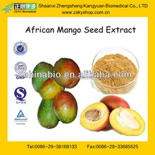 GMP Factory Supply 100% Natural Wild African Mango Extract