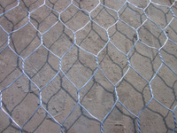 Anping Supplier High Quality Galvanized Hexagonal Wire mesh For Chicken Coop