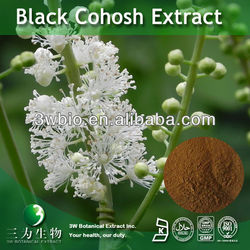 Black Cohosh Extract Triterpenoid Saponins 2.5%-8% HPLC