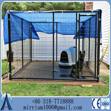 10x10x6 foot Heavy duty large welded metal dog kennel galvanized cover dog run kennels