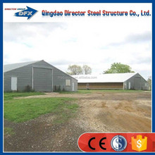 easy to build designer steel chicken farm poultry house