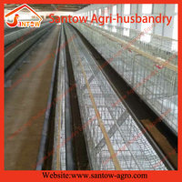 Most popular good quality chicken breeding house