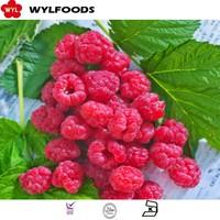 Best Price For Good Frozen Raspberry