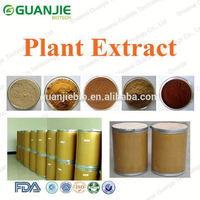 High Quality Natural korean red ginseng tonic Manufactory Supply