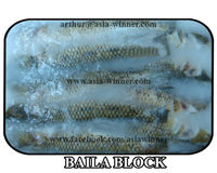 BLOCK BAILA / GANGETIC TANK GOBY (Glossogobiusgiuris) 4 INCHES - 7 INCHES WHOLE