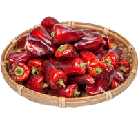 Chinese fresh dried red bell pepper chilli for stemless