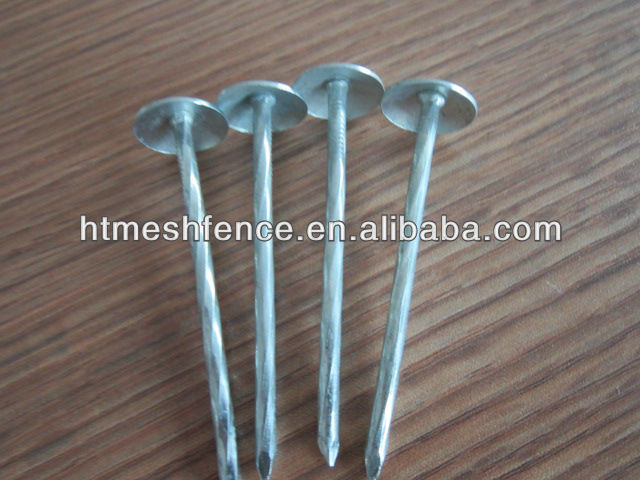 Roofing Nails with smooth BWG9 20mm head diameter 51.2mm length