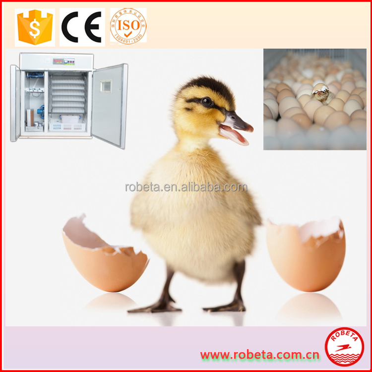 Alibaba china chicken egg incubator machine/alibaba china supplier