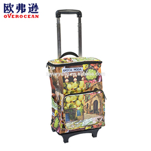 YY-60XC-5 Extendable handle shopping cooler bag shopping folding trolley
