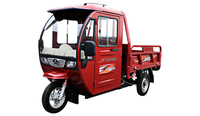Loncin 300cc /600cc /800cc heavy load motorized gasoline adult semi closed truck tricycle/3 wheeler with steering wheel in cab