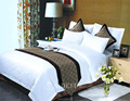 Classic Hot Sale Turkish Luxury Hotel Duvet Cover