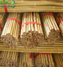 WY-0188 Natural raw bamboo stakes