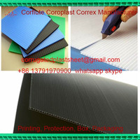 cheap 2mm 3mm 4mm 5mm 6mm pp flute board / fluted sheet