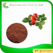 Hot sale Rose Hips extract/Rose Hip Fruit Extract/Rosehip oil/Flavones 20%/Relieve pain plant extract