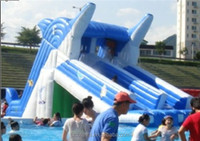 CILE Hot Sale Dolphin Inflatable Water Slide of Park Equipment