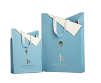 Customised cute wedding gift paper bag with different handle types