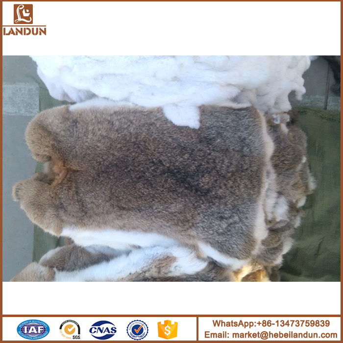 Factory wholesale selling rabbit skin