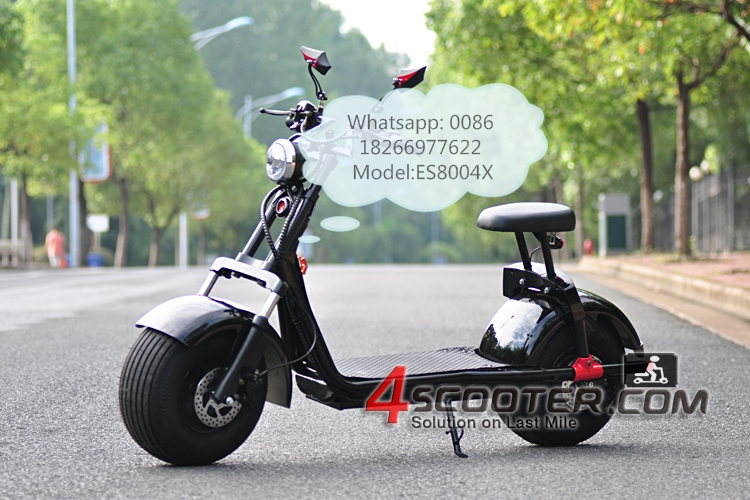 Harley electric scooter 2017 original factory EEC certification citycoco ES8004X