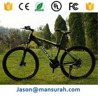 China Fashion Beach Cruiser Big Tire Road Bike Fat Bike/Bicycle