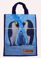 Non Woven recycle Promotional Shopping Bag