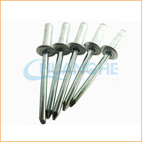 Factory direct wholesale best quality of aluminum alloy blind rivet din7337