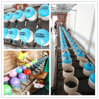 2013 Latex Balloon Printing Machine