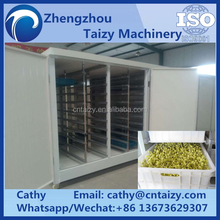Professional bean sprout making machine solar powered(Whatsapp: 0086 13673629307)