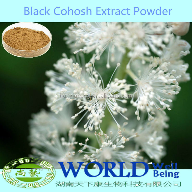 100% Natural Black Cohosh Extract Powder/Black Cohosh P.E, Black Cohosh Extract Low Price