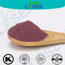 100% Natural Maqui Berry Extract Powder/ Aristotelia chilensis