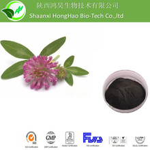ISO Red Clover Extract Powder 8% UV/ UPLC