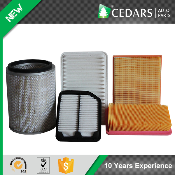 Reliable Auto Parts Wholesaler Supplies Engine Air Filter