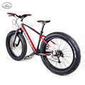 Baolijia 2016 Complete fat bike 26er full carbon fat bike with disc groupset carbon fat bicycle frame with OEM design