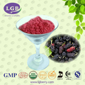 16 Years Manufacturer Supply Natural mulberry leaf extract