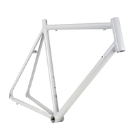 China Supplier Wholesale Aluminum Bike Frame