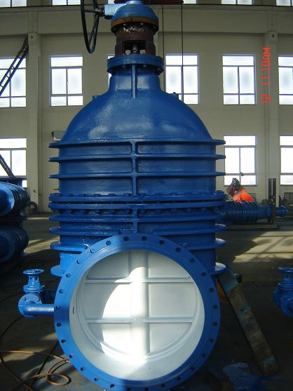 Rising Stem Parallel Double Disk Gate Valve