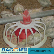 Broiler poultry farm equipment for chicken house