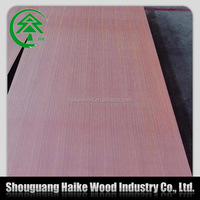 3-18mm red meranti plywood.red hardwood plywood price,commercial plywood