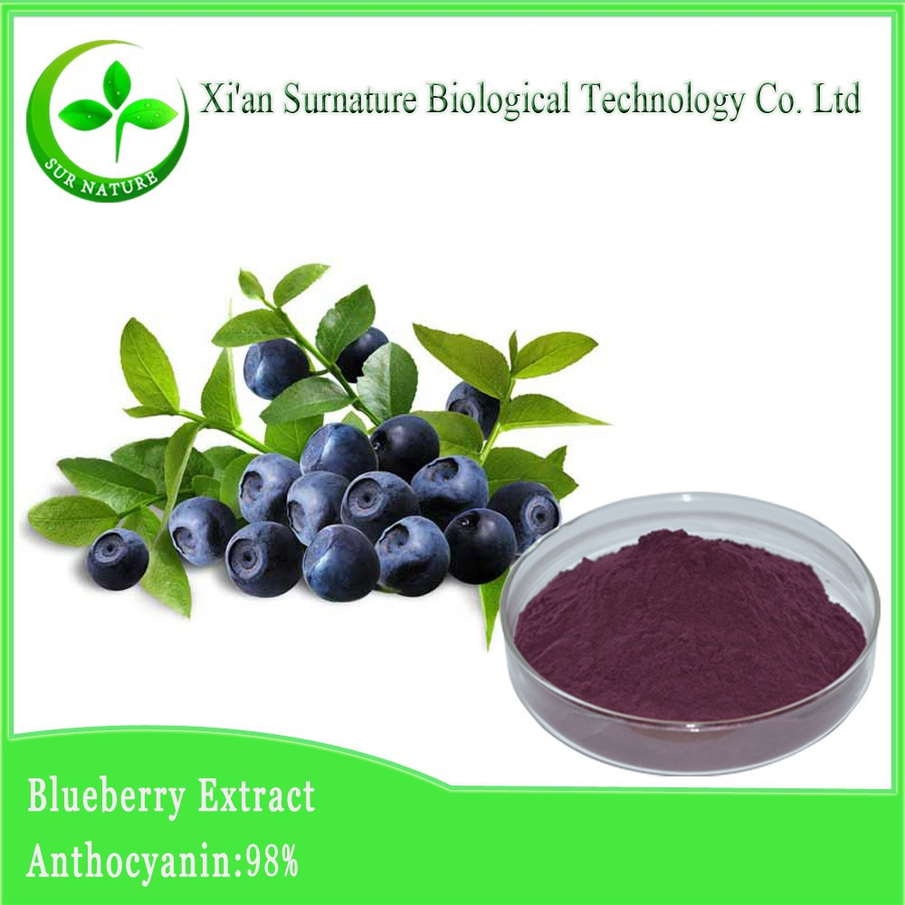100% natural organic bilberry extract bulk