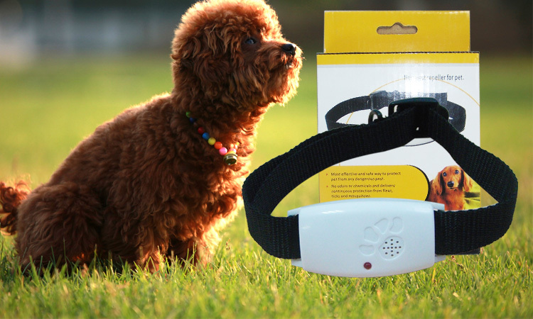 Fleas Mosquito Terminator Electrical Ultrasonic Pest Repeller for dogs and Cats