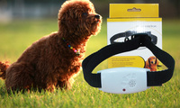 Ultrasonic Pest Repeller Anti Bark Collar for dogs pet hot item