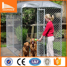 Fashional and professional 10x10x6 foot classic galvanized outdoor dog kennel (Hot sale)