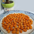 peanut type fried spicy salted soy sauce flavor coated peanuts from china