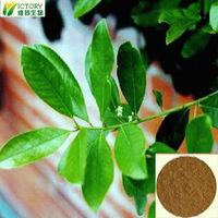 Pure Yerba Mate straw 10:1 / Yerba mate extract Supplier