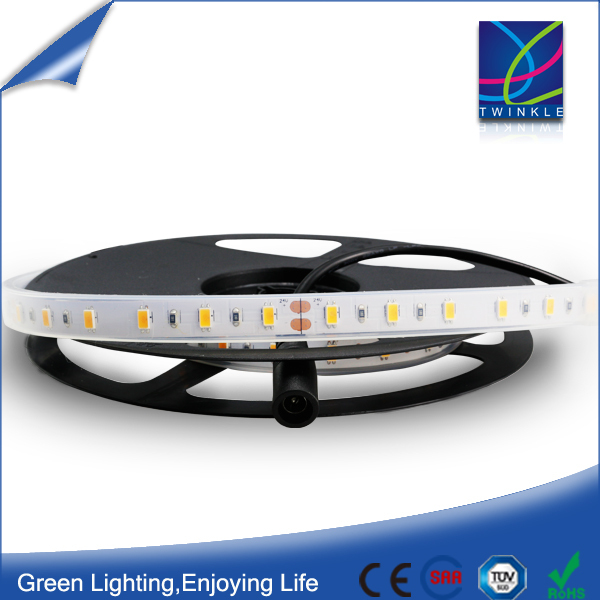 High Brightness 3M tape/clips 60leds/meter IP65/IP67 Flexible LED smd Strip lamp