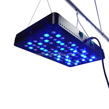 Apollo 8 5w Chip Led Grow Light 400w With 7-11 Bands For Medical Plants