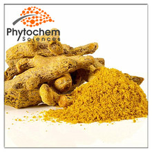 Fresh Turmeric Finger/Leaves/Powder Wholesale Price